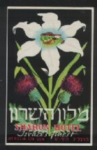 Hotel label luggage labels baggage ISRAEL very RARE #27
